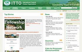 国際熱帯木材機関(ITTO)様